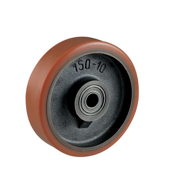 Neg-12981