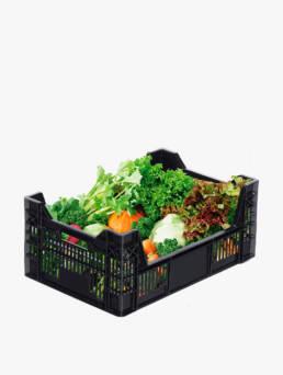 cajas-de-plastico-para-frutas-y-verduras-cajas-plasticas-cajas-contenedores-dissetodiseo