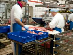sector-alimentario-dissetodiseo_0003s_0002_cajas plasticas calidad alimentaria