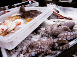 sector-alimentario-dissetodiseo_0003s_0008_cajas plasticas calidad alimentaria